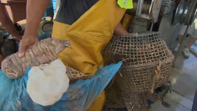 Aus dem Meer gefischter Plastikmüll wird zu Mode