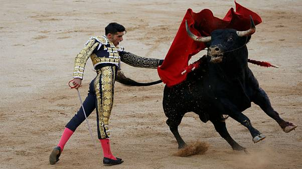 Victory for anti-bullfighting advocates in Spain's Balearic Islands
