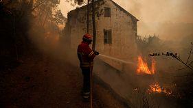 Dorf in Portugal wegen Waldbrands evakuiert