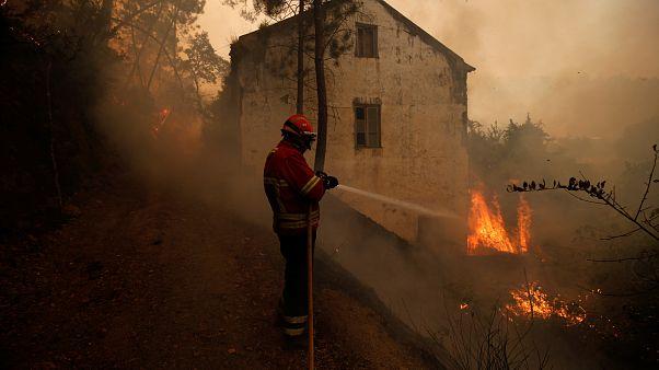 Пожары на юге Европы: огонь у Сен Тропе