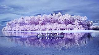 Fotók a színvakok szigetéről úgy, ahogy maguk a színvakok látják