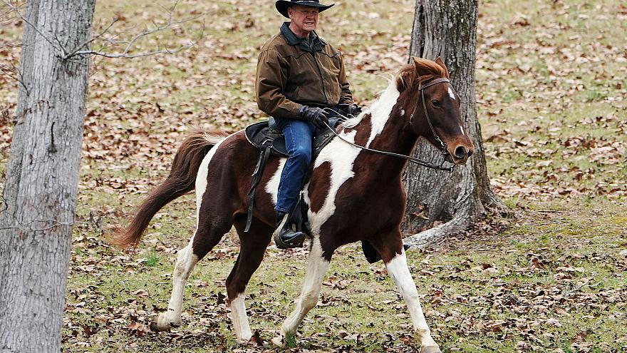 Image: Republican Senate candidate Roy Moore arrives on his horse to cast h