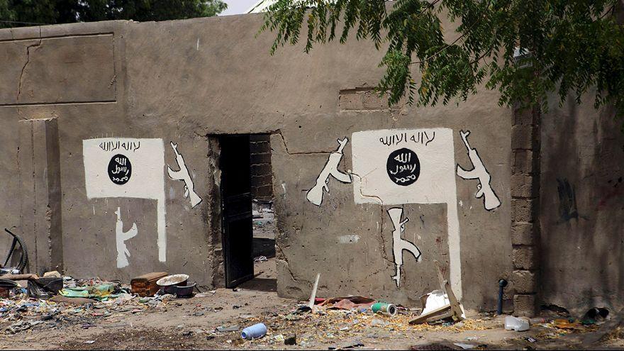 جماعة بوكو حرام تقتل 30 شخصاً في محاولة انقاذ فريق للتنقيب عن النفط