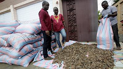 La Côte d'Ivoire intercepte trois tonnes d'écailles de Pangolin.