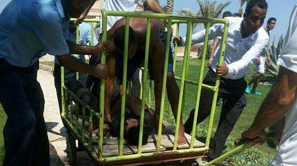 Autor do ataque a turistas no Egito queria juntar-se ao Estado Islâmico