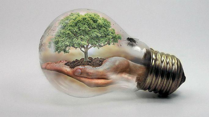 Ab heute macht die Welt Energie-Schulden - Earth Overshoot Day