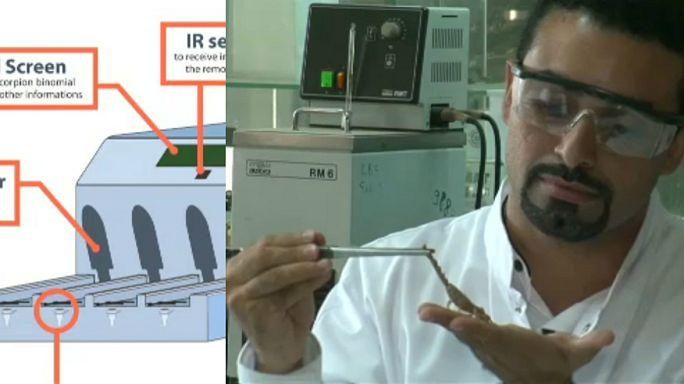 علماء مغاربة يطورون آلة لاستخراج سمّ العقرب النادر