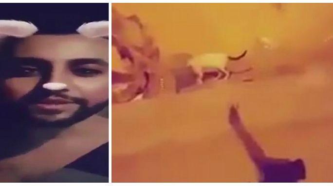 "Saudi-Arabien sucht den ""Katzen-Killer"" - nach Horror-Video auf Snapchat"
