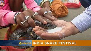 """Inde : à la découverte du """"festival des serpents"""""""
