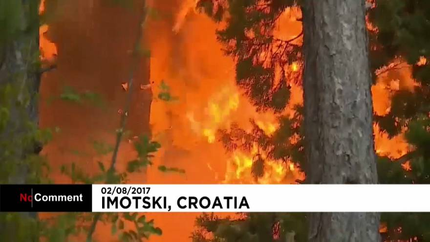 Fires destroy over 10 acres of pine forest in Croatia