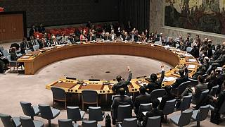 Egypt promises sanctions review as it chairs UN Security Council