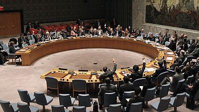 Egypt promises sanctions review as it chairs UN Security Council