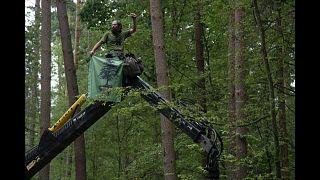 Спасти Беловежскую пущу