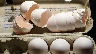 Belgische Behörden wussten seit Juni - Jetzt auch 6 Eiersalatsorten zurückgerufen