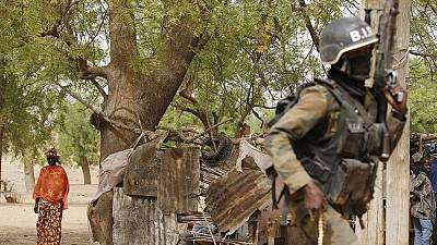 7 killed in suicide bomb attack in northern Cameroon