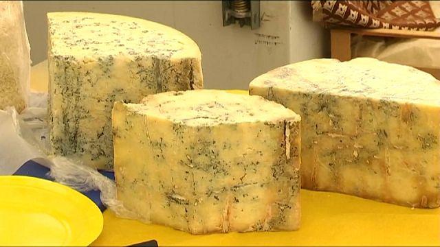 Сыр и санкции