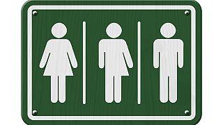 Transgender seeks legal recognition in Botswana after sex change
