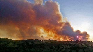 Άρχισε η έρευνα για τα αίτια της πυρκαγιάς στα Κύθηρα - Τεράστια η καταστροφή στο νησί