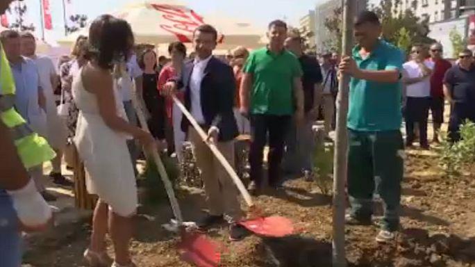 Kosovo: gli alberi degli sposi di Pristina