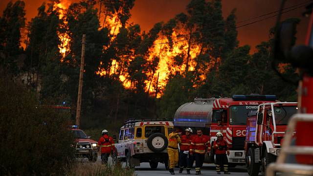 Tackle the root causes of forest fires, say experts