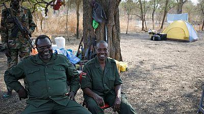 Soudan du Sud : le principal bastion rebelle aux mains de l'Armée