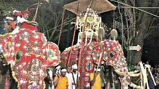 Sri Lanka'nın Esala Perahera Festivali başladı