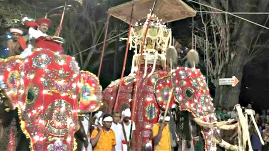 Sri Lanka: Tausende Menschen bestaunen Elefanten