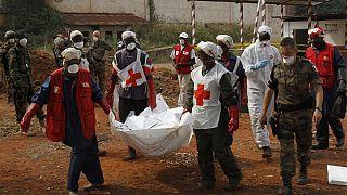 Centrafrique : au moins trois humanitaires tués (Croix-Rouge locale)