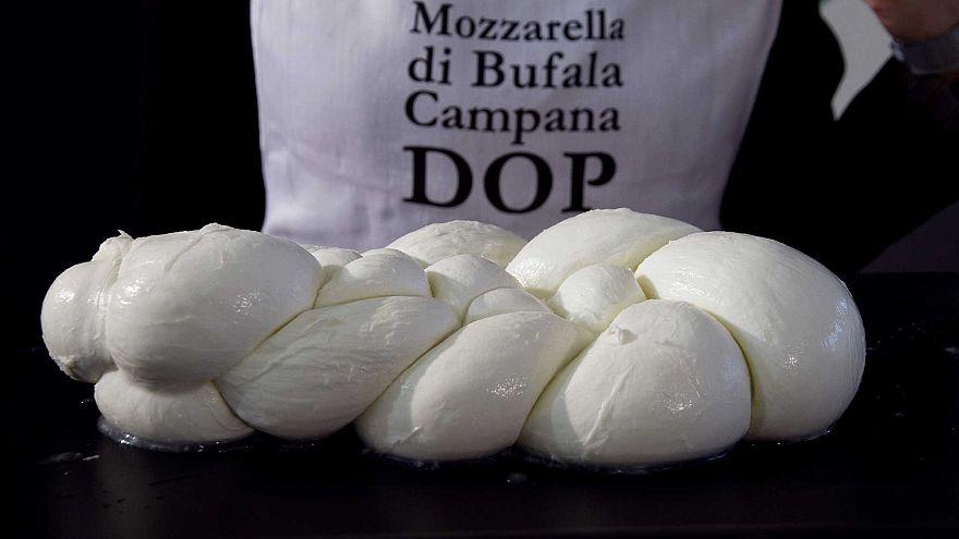 كيف تربعت الموزريلا الحلال على عرش سوق الاجبان الإيطالية؟