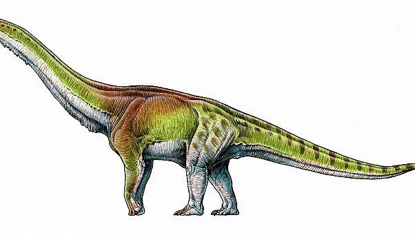 Παταγοτιτάν: Ο μεγαλύτερος δεινόσαυρος στη Γη