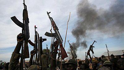 """Centrafrique : """"prolifération"""" des milices et """"prédation"""" des ressources (rapport)"""