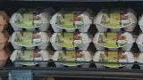 Cresce lista de países afetados pelos ovos contaminados com fipronil
