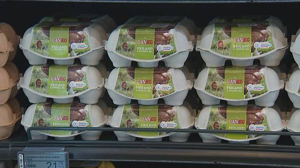 Uova contaminate: 20 tonnellate vendute in Danimarca