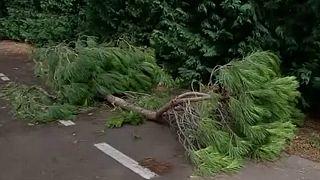 Italien: Verwüstung durch schwere Unwetter