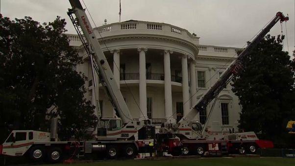 شاهد: أعمال ترميم في البيت الأبيض