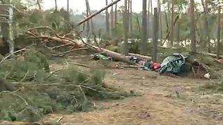 Kidőlő fák gyilkoltak Lengyelországban
