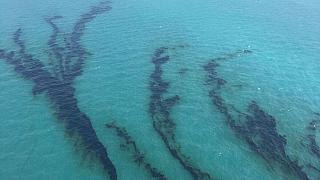 فرق طوارئ لمعالجة البقع النفطية المتسربة جنوب المياه الإقليمية