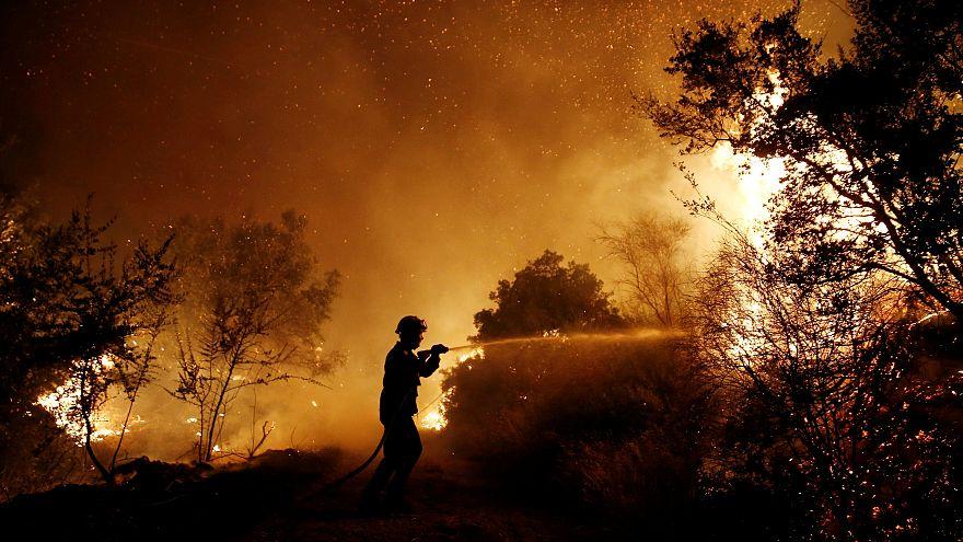 In fiamme i boschi della Grecia, roghi dolosi indomiti a Zante