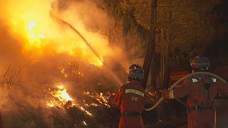 Kein Ende in Sicht: Portugals Wälder weiter in Flammen