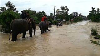 India e Nepal: morte e devastazione dopo le alluvioni