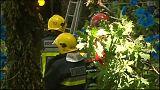Falling tree 'kills 11 people' in Madeira