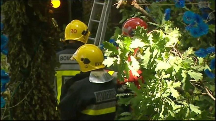 Procissão trágica na Madeira: Queda de árvore faz 13 mortos
