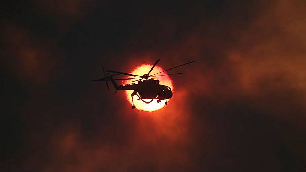 Greece asks neighbours for help in tackling wildfires