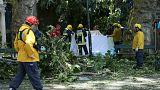 Identificadas todas las víctimas de la tragedia de Funchal