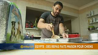 Cairo's dogs receive home cooked food [The Morning Call]