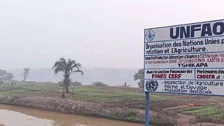 RDC – crise alimentaire : les agences onusiennes lancent un appel à l'aide