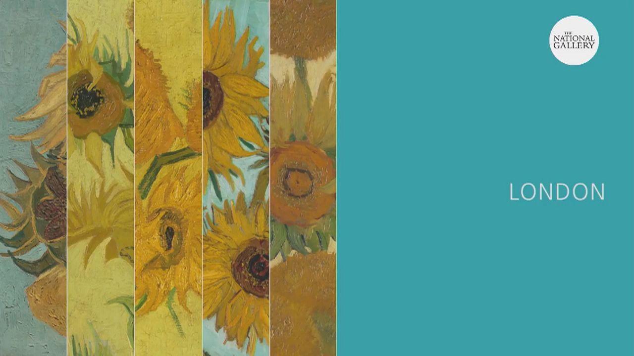 Van Gogh's Sunflowers in Virtual Reality