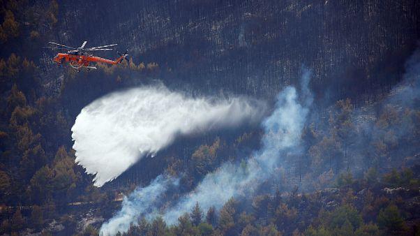 Υπό έλεγχο η δασική πυρκαγιά στην Κεφαλονιά