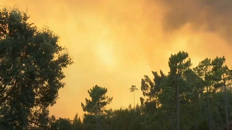 Pusztító erdőtüzek Portugáliában
