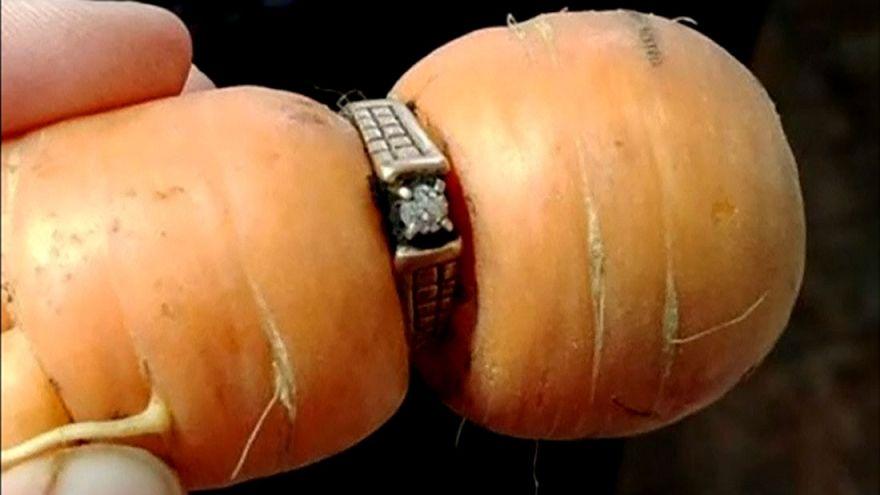 """سيدة تعثر على خاتمها الماسي في """"جزرة"""" بعد 13 عاماً على فقدانه"""